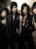 Other members of BVB